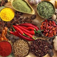 Top 10 thực phẩm nên hạn chế khi thời tiết nắng nóng