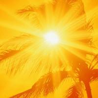 Mối nguy hiểm khi nhiệt độ tăng cao