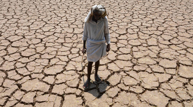 Nắng nóng kéo dài khiến ruộng đồng khô cằn, mùa màng thất thu.