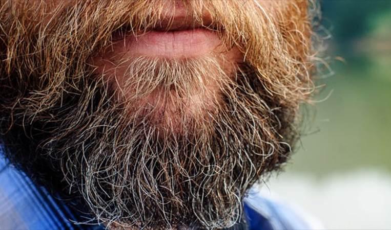 Năm 1567, Hans Steininger (người Áo) đã qua đời vì vấp ngã bởi bộ râu quá dài của chính mình.