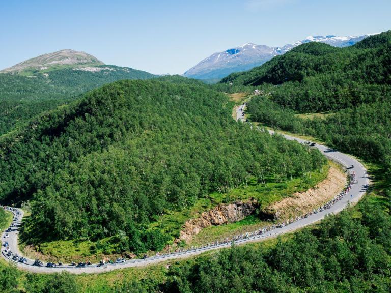 Na Uy hiện đã trở thành đất nước đầu tiên nói không với việc chặt phá rừng.