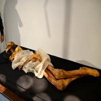Hình xăm tuyệt đẹp trên cơ thể công chúa Siberi