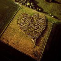 Ngắm 16 bức hình tuyệt vời chụp từ ống kính siêu cao, siêu rộng