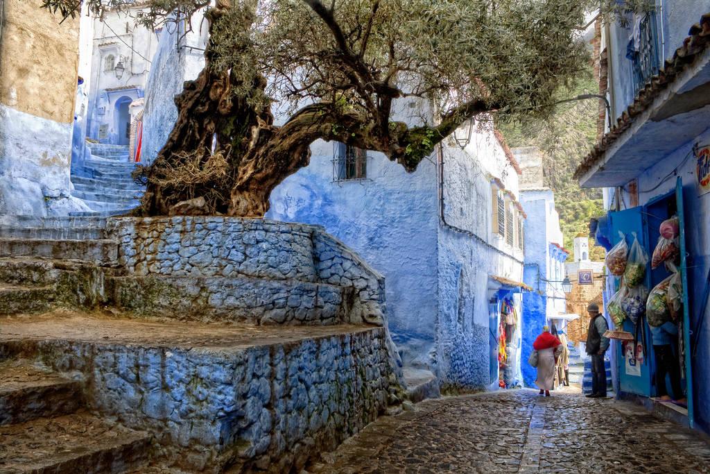 """""""Thành phố Xanh"""" của Chefchaouen là một nơi dừng chân tuyệt vời dưới chân núi Rif với khung cảnh núi non hùng vĩ, thiên nhiên tươi đẹp và những kiến trúc cổ xưa.."""