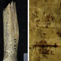 Tập tục róc thịt chặt xương người chết trên đảo Scotland cổ đại