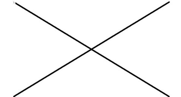 Con người là những sinh vật sống duy nhất có thể vẽ đường thẳng