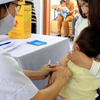 Cảnh giác bệnh viêm não Nhật Bản bùng phát