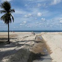 Siêu vi khuẩn kháng thuốc đã xuất hiện tại bờ biển thi đấu Olympic ở Brazil