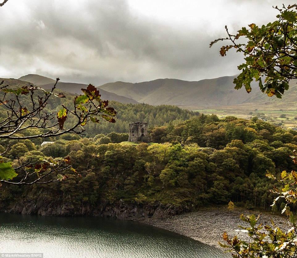 Lâu đài Dolbarden nằm ẩn mình trong một khu rừng tuyệt đẹp ở xứ Wales