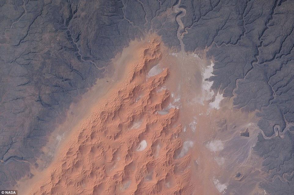 Vẻ đẹp mỹ miều từ những cồn cát sa mạc ở miền trung Algeria.