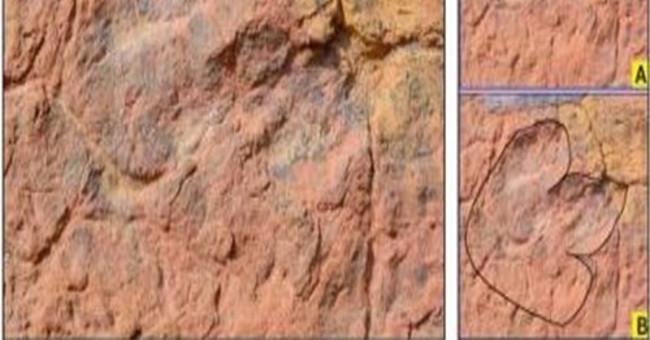 Phát hiện dấu chân khủng long 150 triệu năm