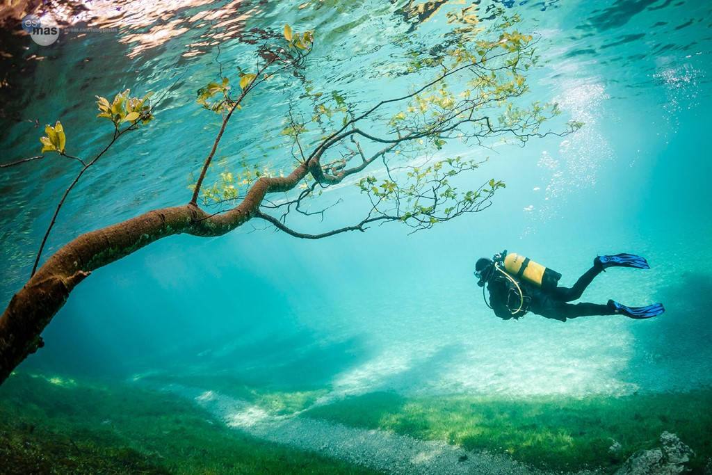 Các thợ lặn như đang bay trên không trung khi khám phá lòng hồ.