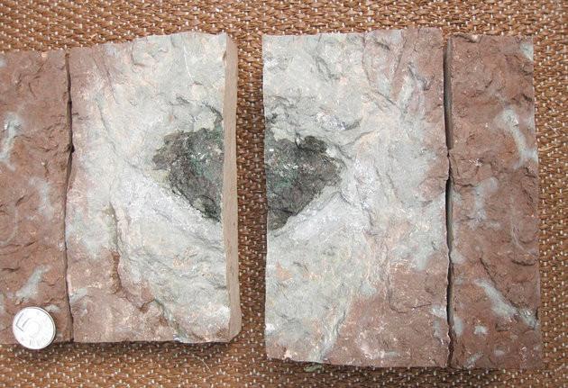 Tảng đá có chứa mảnh thiên thạch được tìm thấy tại Thụy Điển.