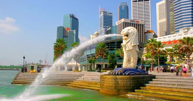 Mặc dù Singapore còn được mọi người biết đến với tên gọi quốc đảo sư tử nhưng nơi đây không có con sư tử nào.