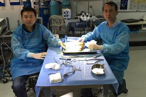 Bác sĩ Xiaoping Ren (phải) cùng một đồng nghiệp trong phòng thí nghiệm đang nghiên cứu giải phẫu học một cái đầu khỉ.