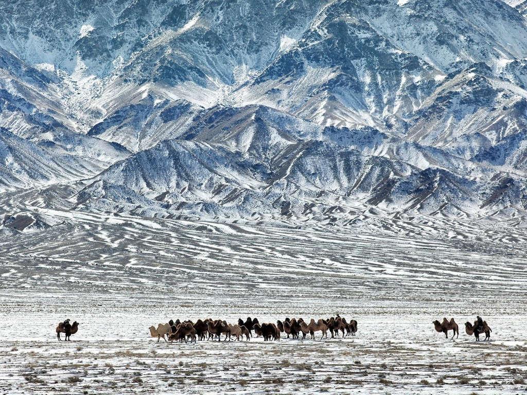 Sa mạc Gobi, Mông Cổ