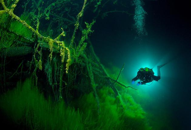 Cả một thế giới bí mật đang tồn tại dưới đáy hồ.