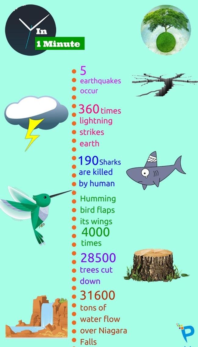 Điều gì sẽ xảy ra trong một phút trong giới tự nhiên?