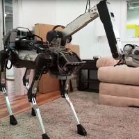 Video: Kinh ngạc với robot thú cưng có thể làm được việc nhà