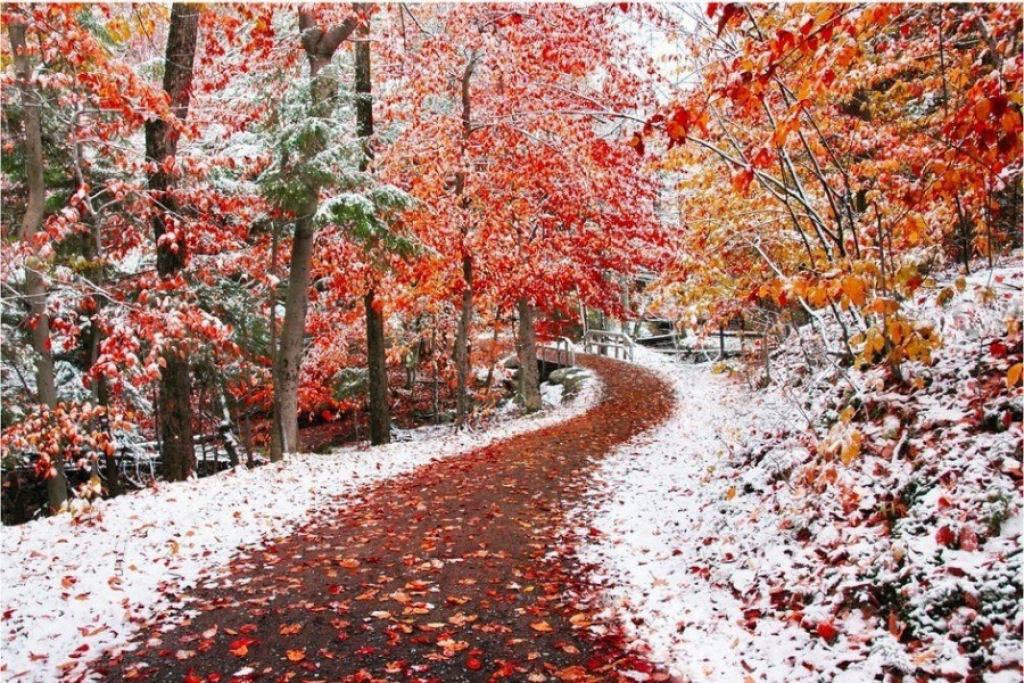 Khi mùa thu gặp mùa đông.