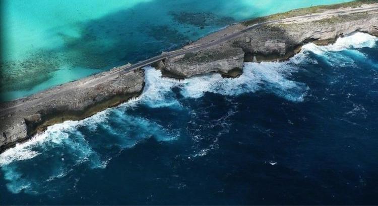 Các nhà khoa học ghi được âm thanh giống tiếng huýt sáo phát ra từ vùng biển Caribean.