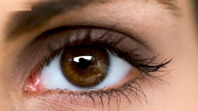 Khóe mắt của chúng ta được tiến hóa và phát triển từ mắt của loài chim và bò sát.