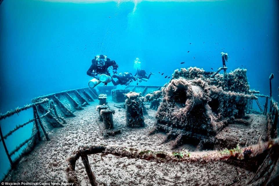Um El Faroud cũng được dùng làm rạn san hô nhân tạo, với vô số loài cá và sinh vật biển sinh trưởng.