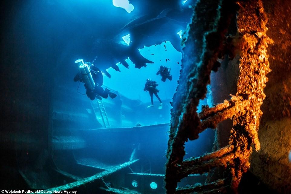 Nhiều thợ lặn tiếp cận các phần khác nhau của Um El Faroud. Giờ đây, xác tàu này là nơi sinh sống của các loài cá biển.