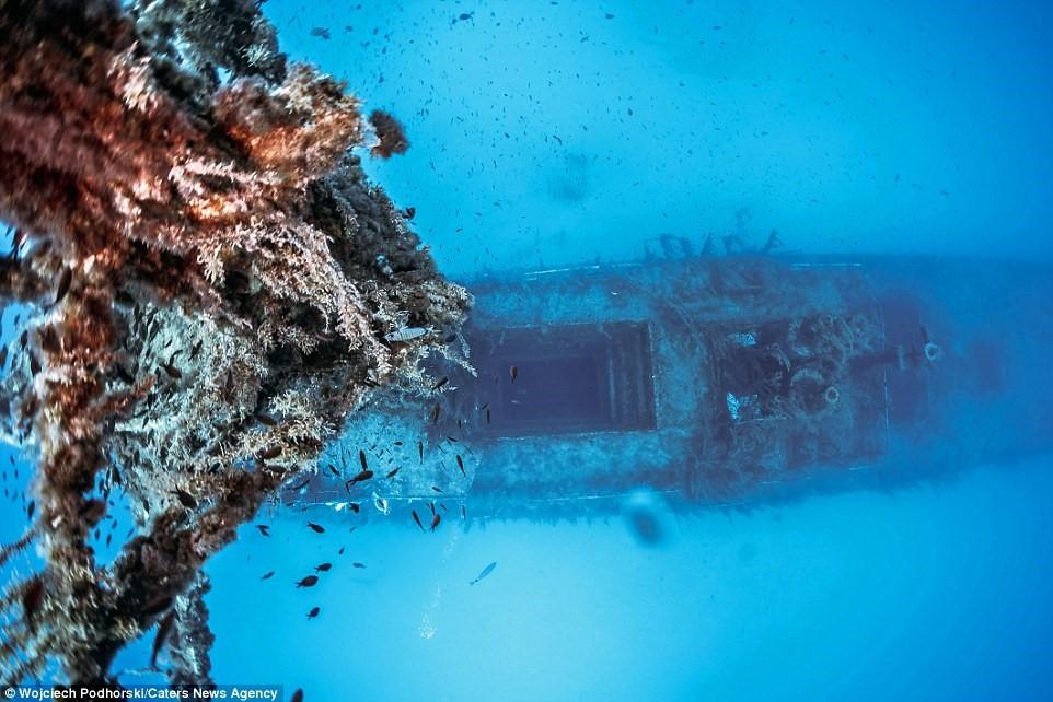 Podhorski cho biết việc lặn trong các xác tàu đắm khá nguy hiểm.