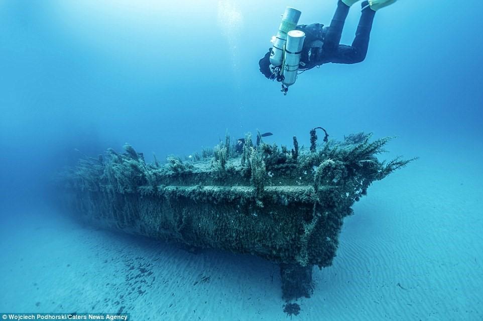 Một thợ lặn đang bơi trong P29, trước kia là tàu tuần tra của Malta, nằm ngoài khơi Gozo.