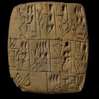 Người Iraq trả lương bằng bia 5.000 năm trước