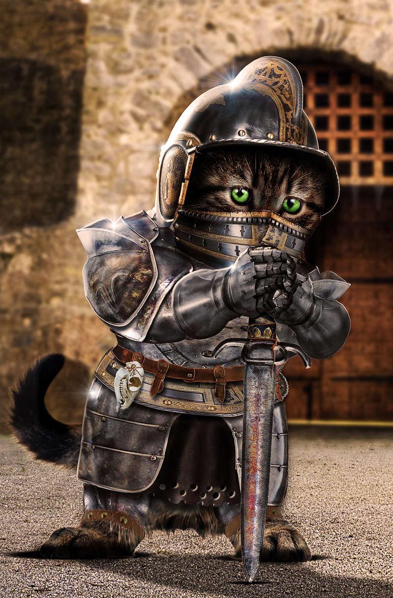 Mèo bắt cá (Fishing cat), MadsDK