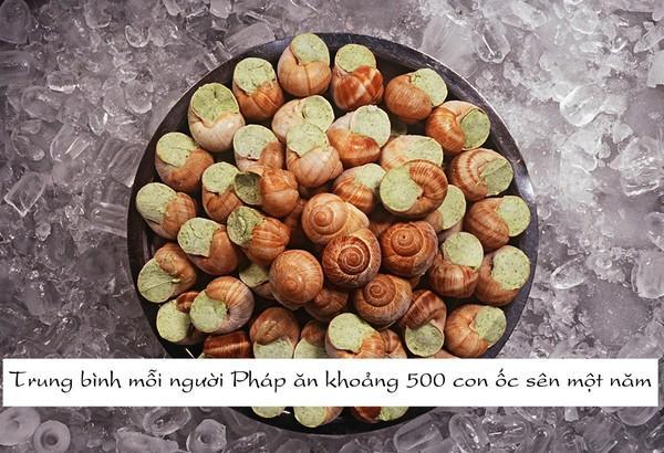 Người Pháp chế biến rất nhiều món từ ốc sên, trong đó món ốc sên bơ tỏi.