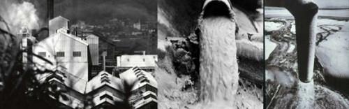 Nhà máy hóa chất Chisso của Nhật Bản trực tiếp xả nước thải chứa thủy ngân ra biển.
