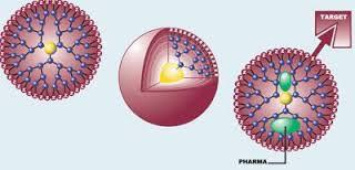 Các hạt nano dendrimer sẽ đóng gói vắc xin và mang chúng đến mục tiêu.