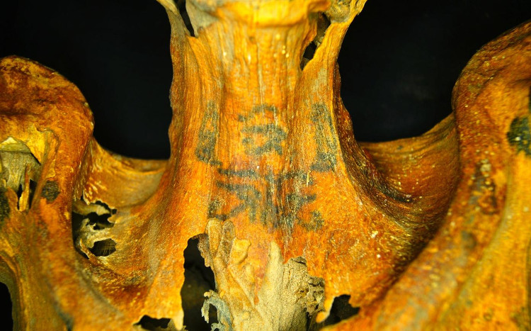 Hình xăm những con mắt thần Wadjet trên cổ xác ướp.