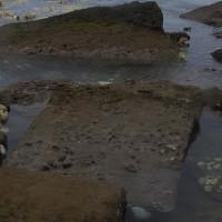 """Thành phố cổ đại bỗng nhiên """"hiện nguyên hình"""" trên bờ biển sau thủy triều"""
