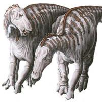 Kỳ lạ hóa thạch khủng long mỏ vịt có khối u trên mặt