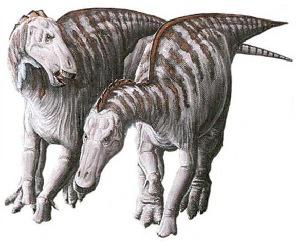 Loài khủng long mỏ vịt có khối u trên mặt.