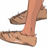 Video: Lịch sử giày từ 7000 năm trước Công nguyên đến hiện đại