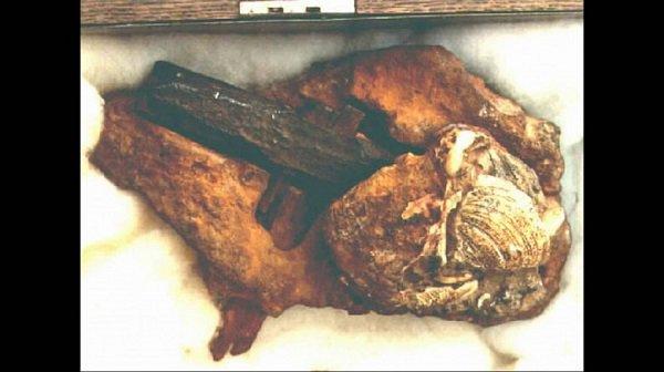 Phóng xạ carbon cho thấy chiếc búa này có niên đại khoảng 500 triệu năm tuổi. Trước cả khoảng thời gian mà con người xuất hiện trên Trái đất.