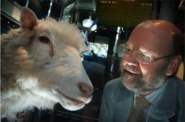 Cừu nhân bản vô tính Dolly và Sir Ian Wilmut, người khai sinh ra sản phẩm độc đáo này.
