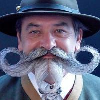 13 sự thật thú vị về ria mép và râu