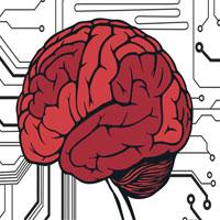 """Đau đầu đi tìm câu trả lời cho thắc mắc """"Não chúng ta nặng bao nhiêu GB"""""""