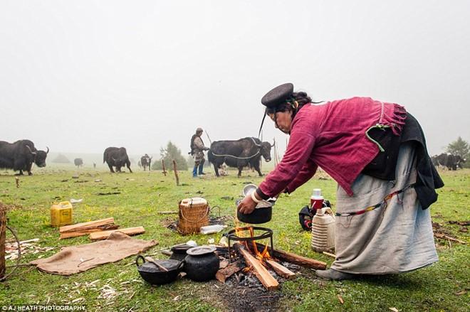 Bò yak cũng đóng vai trò quan trọng trong khẩu phần ăn của người Brokpa,. Không chỉ lấy thịt, họ còn vắt sữa để uống.