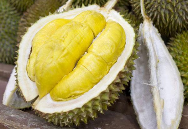"""Quả sầu riêng được nhiều người ở Đông Nam Á xem như là """"vua của các loại trái cây"""""""