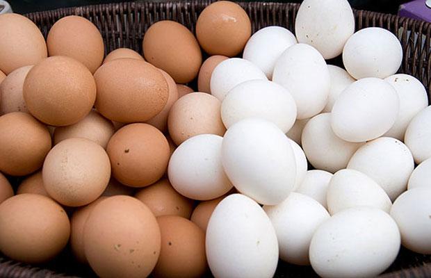 Trứng gà nâu và trứng gà trắng.