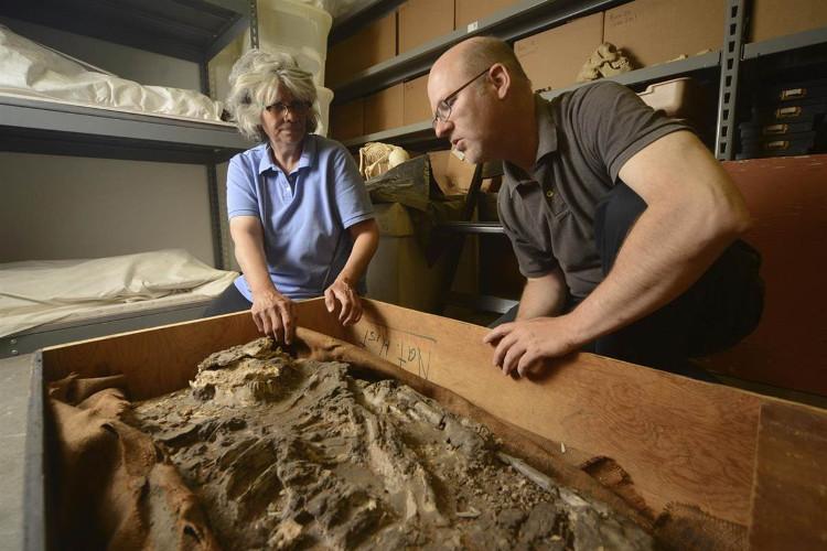 Bộ xương có niên đại khoảng 4500 TCN, đã được phát hiện bởi một đoàn thám hiểm của Đại học Pennsylvania.
