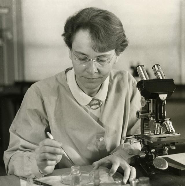 Nhà di truyền học Barbara McClintock