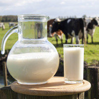 Phương pháp bảo quản sữa tươi hơn 2 tháng